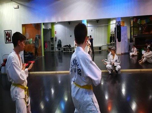 Taekwondo IT en Zaragoza | Centro Daniela Goitre